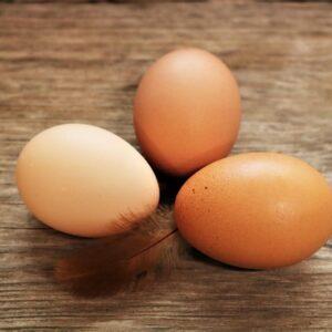 Fresh eggs farm to table hen house free roaming