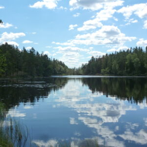 Våraskruvsjön
